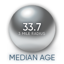 3 mile radius brambleton corner plaza median age
