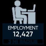 employment demographics of brambleton virginia 3 mile radius