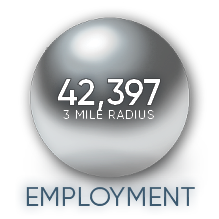 Brambleton Town Center Virginia - Loudoun County Demographic for 1 3 5 and 10 mile radius 1 3 and 5 mile demographics